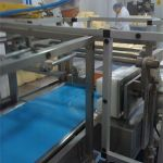 Chesse Cutter 2008 machine safety upgrade